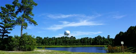 Copperfield Homes for Sale in Wilmington, NC | The Cameron