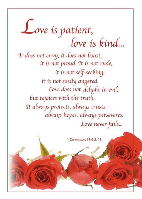 """""""Love is Patient Roses"""" by SandraRose   Redbubble"""