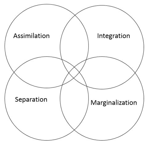 Berry's Model of Acculturation | Working in a Cross