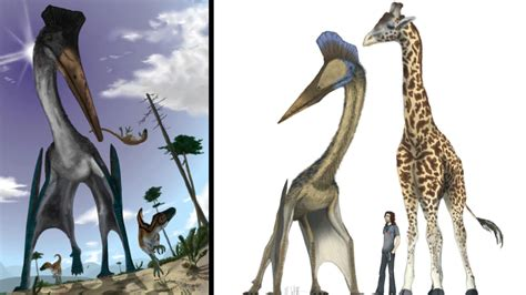 What would life be like if pterosaurs were alive today?
