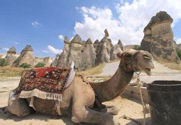 TOURS IN CAPPADOCIA ,HOME   HOTELS IN ISTANBUL & TURKEY