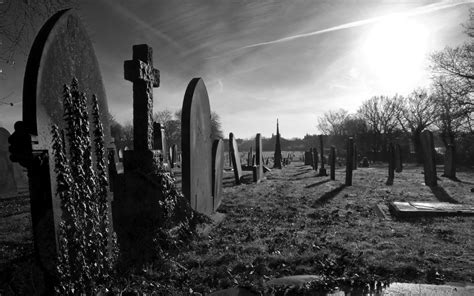 Cemetery Wallpaper and Background Image | 1680x1050 | ID